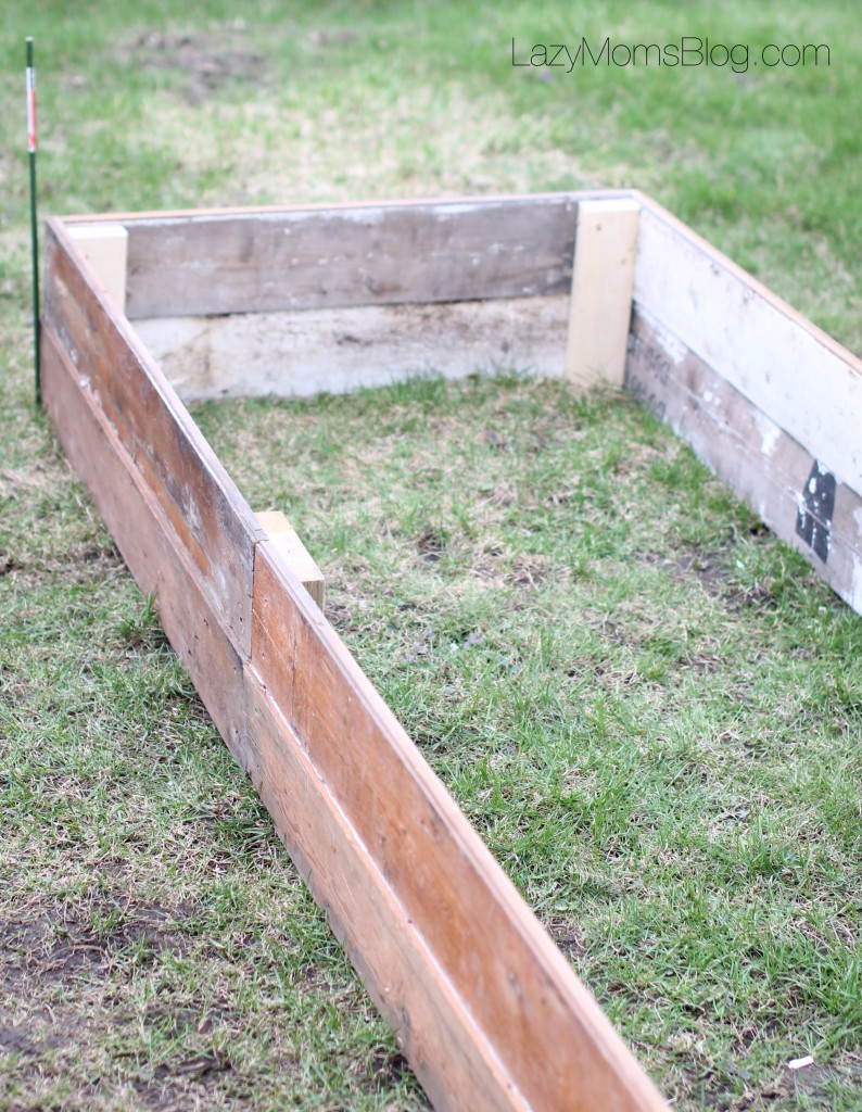 Build a raised bed